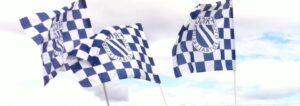 Friggflagg