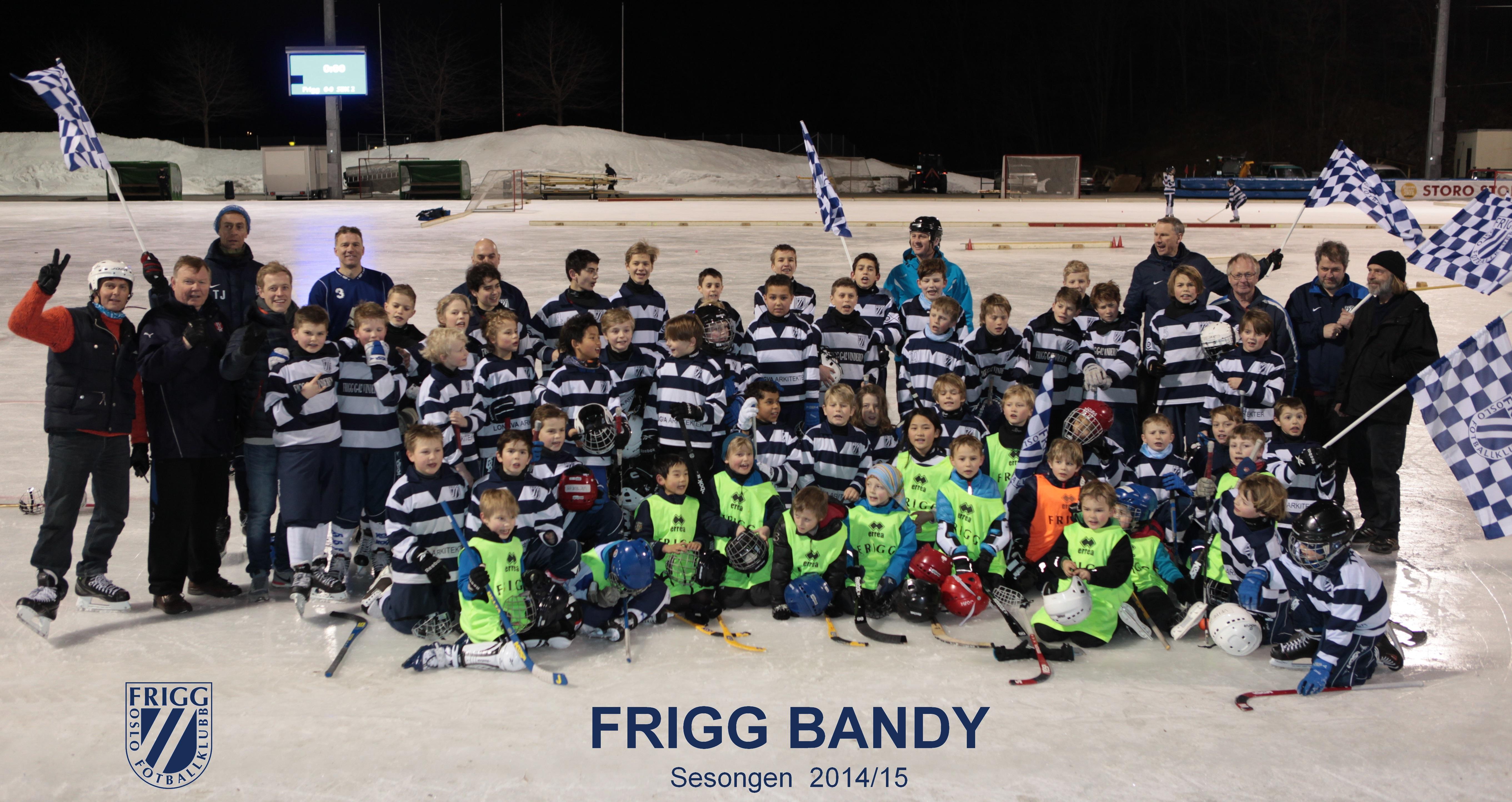 Frigg-bandy-samlebilde-2014-2015-cut1-2